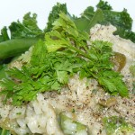 asparagus and chervil risotto