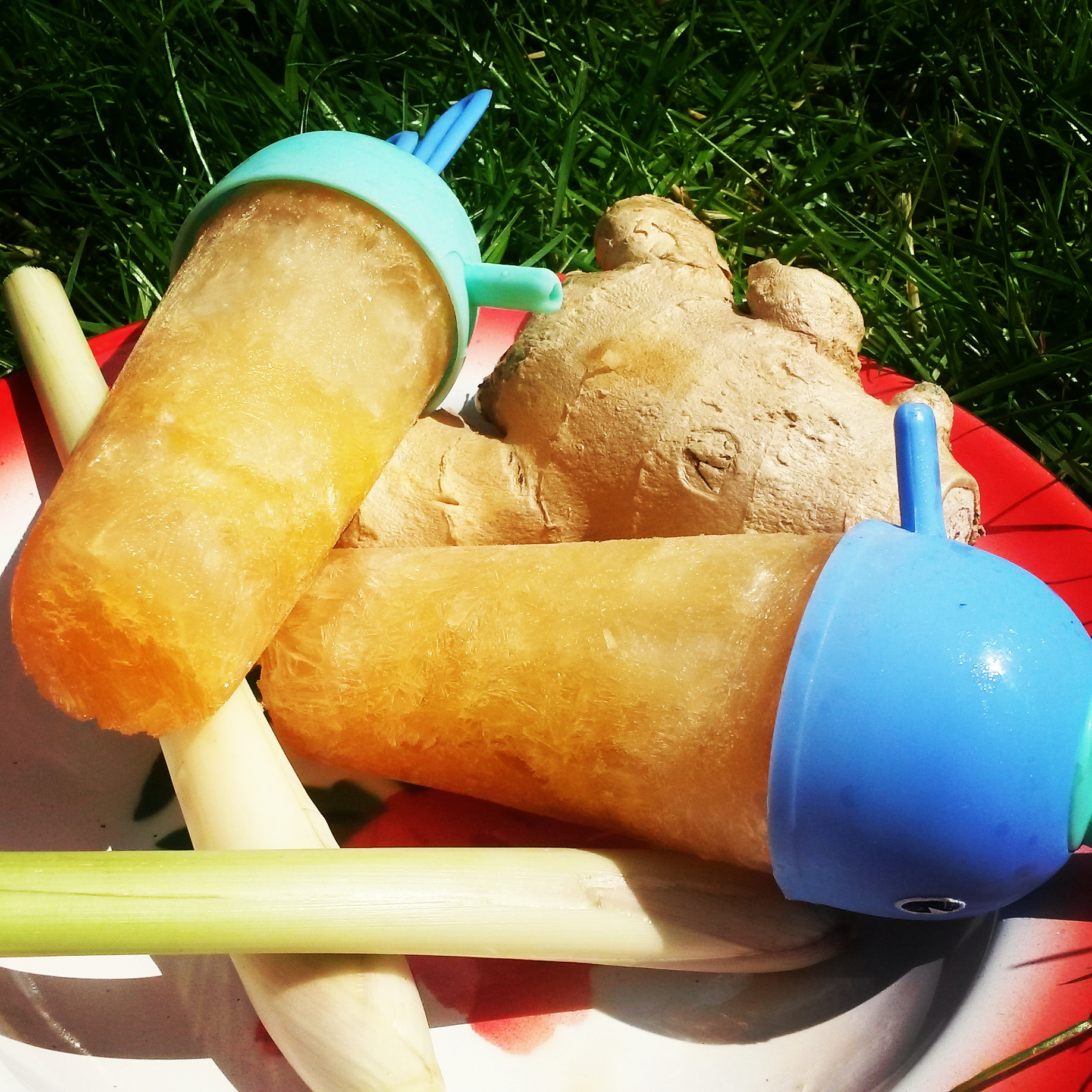 Ginger and Lemongrass Recovery Lollies