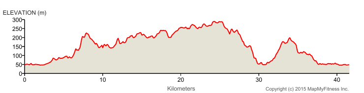 coniston marathon elevation