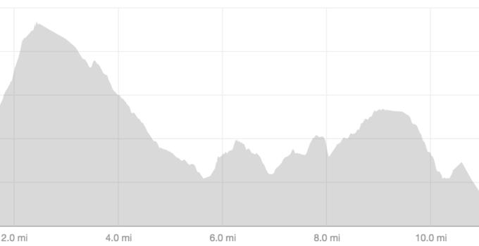 Round Sheffield Run Race Report
